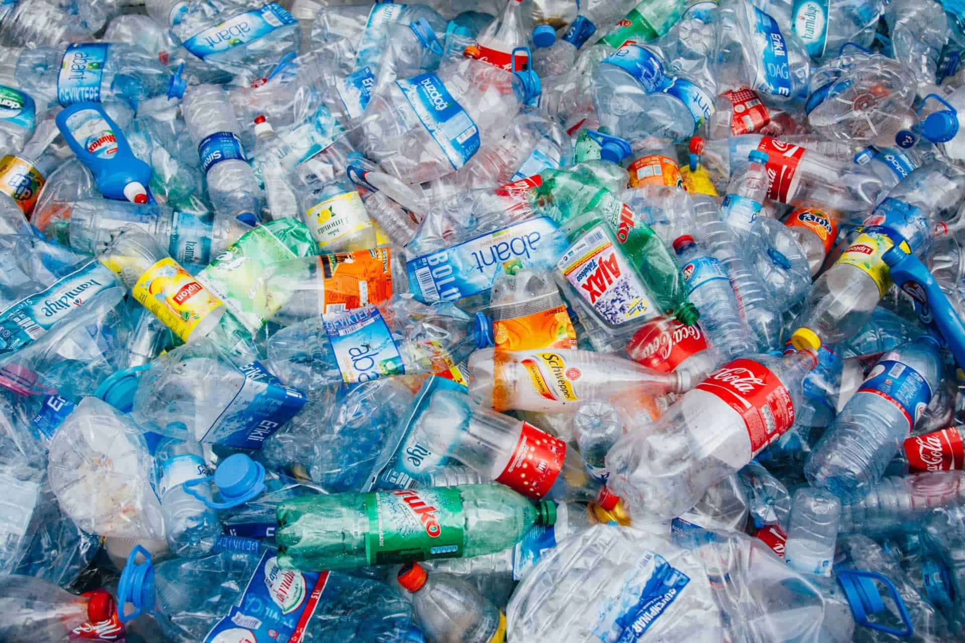 Everything you need to know about plastic bottle recycling!
